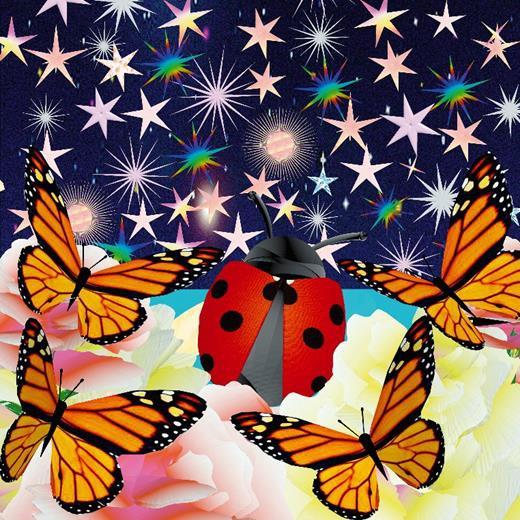 amazing ladybug